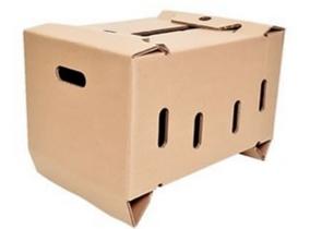 Cajas con Resina para Congelados | Cajas Especiales - CARTENSA